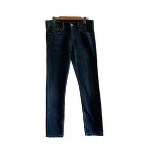 Levi's Men's 510 Blue Jeans 30 x 30